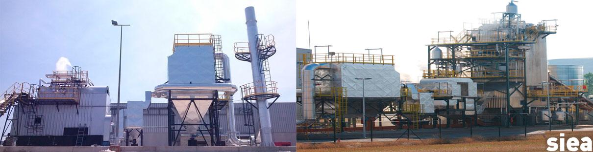 biomasa_1
